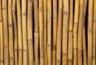 Acland Bamboo fencing 2