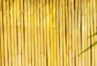 Acland Bamboo fencing 4