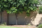 Acland Barrier wall fencing 5