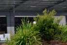 Acland Chainlink fencing 13
