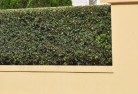 Acland Decorative fencing 30